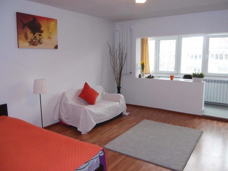 Studio for rent in Burebista