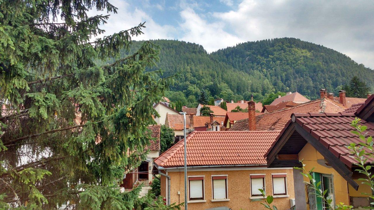Apartament primitor cu doua camere de inchiriat in Schei - zona verde