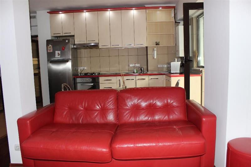 Open space one bedroom apartment for rent - Muncii Square