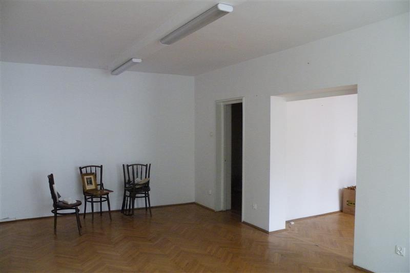 Vila moderna cu 4 dormitoare in Iancu Nicolae