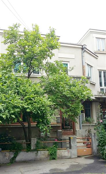 House for sale in Dorobanti (Historical Monument)