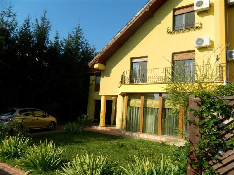 Vila cu 4 dormitoare in Iancu Nicolae