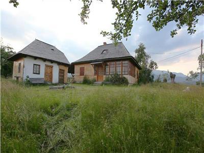 Casa de vacanta deosebita150mp teren 25000mp - Sirnea, Bran