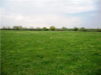 Land for sale in Snagov