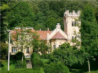 Castel Zichy de vanzare in Oradea, Bihor