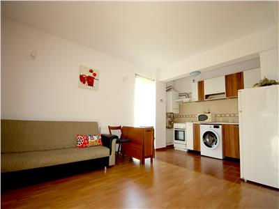 Greenfield one bedroom apartment for rent in Greenfield, Baneasa Forest