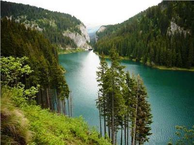 Teren Impadurit de vanzare chiar pe malul Lacului Bolboci