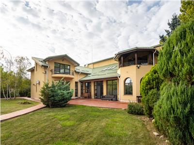 Domain with private park and 2 splendid houses, for sale, Snagov